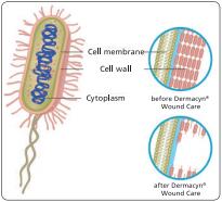 Dermacyn